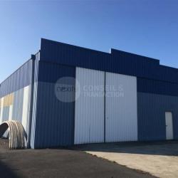 Location Local d'activités Saint-Alban 375 m²