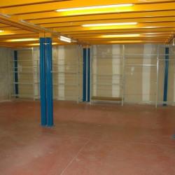 Location Local d'activités Alfortville 290 m²