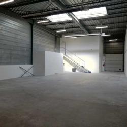 Location Local d'activités Villiers-sur-Orge 554 m²