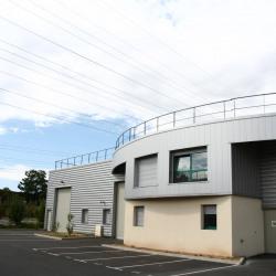 Location Local d'activités Saint-Ouen-l'Aumône (95310)