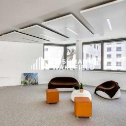 Location Bureau Lyon 2ème 1786,6 m²