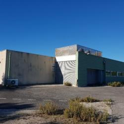 Location Local d'activités Saint-Clément-de-Rivière 1300 m²