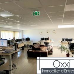 Vente Local d'activités Vaux-le-Pénil 1430 m²