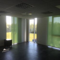 Location Bureau Bassussarry 220 m²