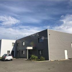 Location Local d'activités Auterive 1100 m²