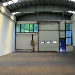 Location Local d'activités Genay 268 m²