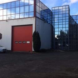 Location Local d'activités Ablon-sur-Seine 1000 m²