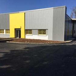 Location Local d'activités Chassieu 536 m²
