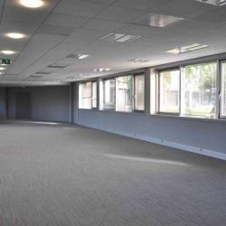 Location Bureau Écully 428 m²