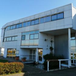 Vente Local d'activités Sucy-en-Brie 1600 m²