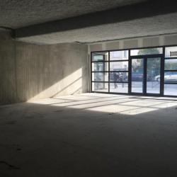 Vente Local d'activités Toulouse 102 m²
