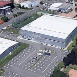 Location Local d'activités Beauzelle 2000 m²