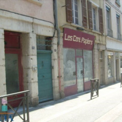 Location Local commercial Vienne 50 m²