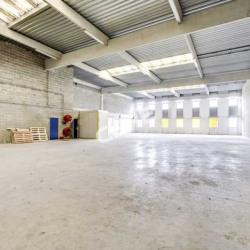 Vente Local d'activités Argenteuil 621 m²