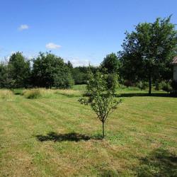 Vente Terrain Saint-Martial-d'Artenset 2100 m²