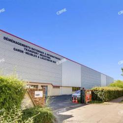 Location Local d'activités Buc 3500 m²