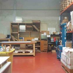 Location Local d'activités Alfortville 245 m²