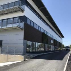 Vente Bureau Artigues-près-Bordeaux 194 m²