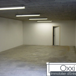 Vente Local d'activités Chartrettes 1195 m²