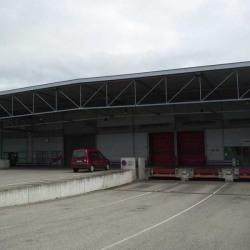 Location Local d'activités Entzheim 75 m²