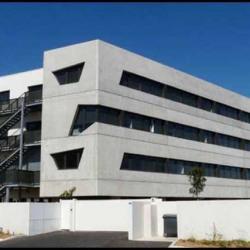 Location Bureau Montpellier Hrault 34 255 m Rfrence N 647869