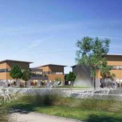 Vente Local d'activités Saint-Cyr-l'École 884 m²