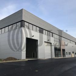 Vente Local d'activités Lisses 536 m²