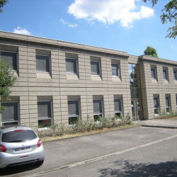 Location Bureau Feyzin 250 m²