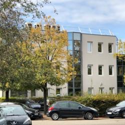Location Bureau Lyon 7ème 210 m²