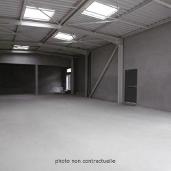 Location Local commercial Montauban (82000)