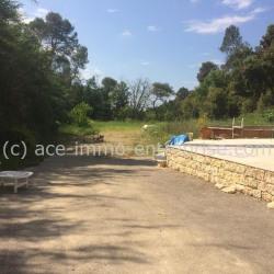 Location Terrain Saint-Paul 5000 m²