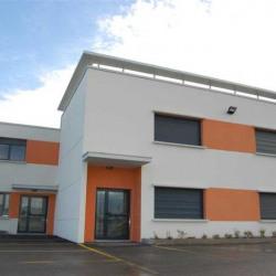 Vente Entrepôt Meyzieu 3601 m²