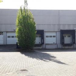 Location Entrepôt Goussainville (95190)