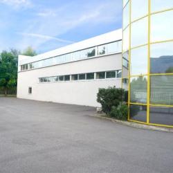 Vente Local d'activités Domène 1998 m²