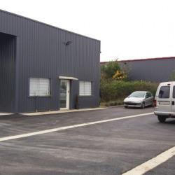 Vente Local d'activités Bessières 920 m²
