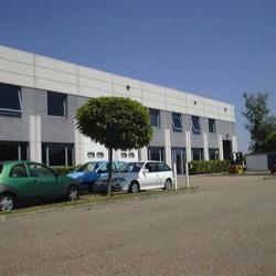 Location Local d'activités Épône (78680)