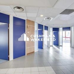 Location Bureau Villeneuve-Loubet 1342 m²