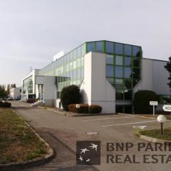 Vente Local d'activités Sausheim 5177 m²