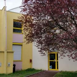 Location Local d'activités Vaulx-en-Velin (69120)