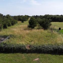 Vente Terrain Soultz-Haut-Rhin 2900 m²