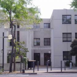 Location Bureau Marseille 9ème 215 m²