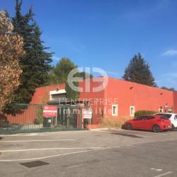 Location Local commercial Mouans-Sartoux 594 m²