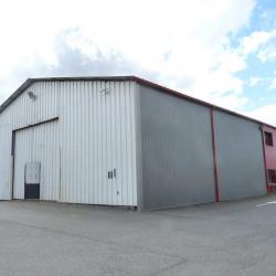 Location Local d'activités Muret 460 m²