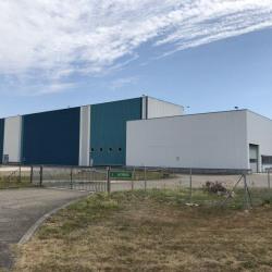 Vente Local d'activités Burnhaupt-le-Haut 7360 m²