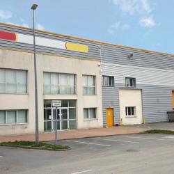 Vente Entrepôt Bailly-Romainvilliers (77700)