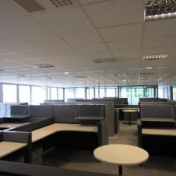 Vente Bureau Puteaux 1637 m²