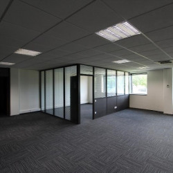 Location Bureau Bry-sur-Marne 221 m²