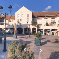 Location Local d'activités Thiais 75 m²