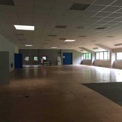 Vente Entrepôt Lognes 1594 m²