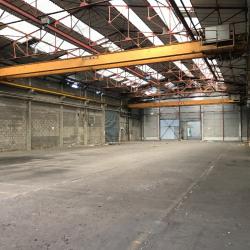 Location Entrepôt Angers 1000 m²